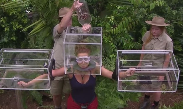 TOWIE's Ferne McCann screams and squeals in her first Bushtucker Trial - Dicing With Danger. I'm A Celebrity...Get Me Out Of Here!  - 19 November 2015.