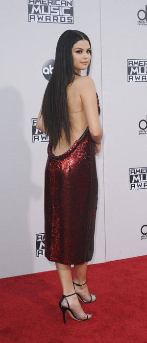 Selena Gomez wears backless dress on red carpet at the 2015 American Music Awards in Los Angeles 23rd November 2015
