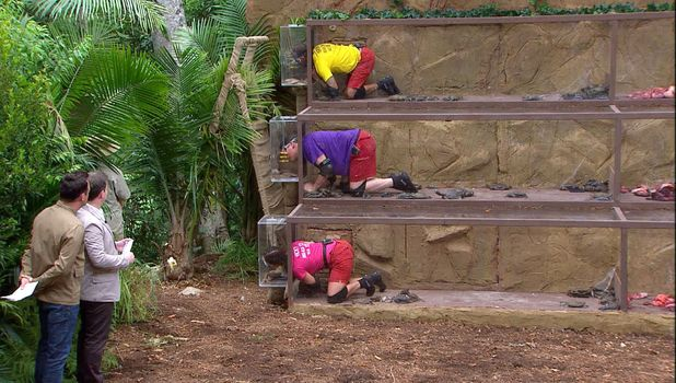 Bushtucker Trial - Steps to Hell: Tony Hadley, Kieron Dyer and Vicky Pattison on I'm A Celebrity... Get Me Out Of Here! - 27 Nov 2015
