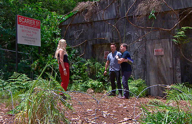 'I'm A Celebrity...Get Me Out Of Here!' TV Programme, Australia - 26 Nov 2015 Bushtucker Trial - Scarier 51: Lady Colin Campbell with Ant and Dec