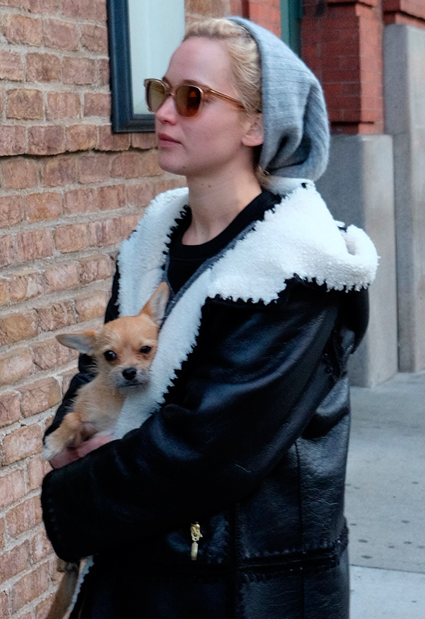 Jennifer Lawrence out with her dog NYC, 25 Nov 2015