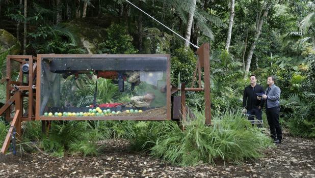 'I'm A Celebrity...Get Me Out Of Here!' TV Show, Australia - 04 Dec 2015 Bushtucker Trial: Twisted Tombola - Kieron Dyer and Vicky Pattison with Ant and Dec