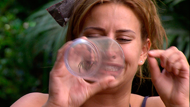 I'm A Celebrity...Get Me Out Of Here!' TV Show, Australia - 06 Dec 2015 Bushtucker Trial: Bush Tucker - Ferne McCann takes part in her final trial... four meals to eat