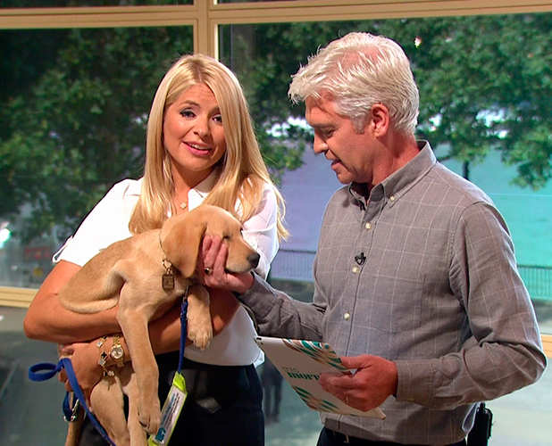 This Morning. Broadcast on ITV1 HD Clover with Holly and Phillip on 7 Sept 2015