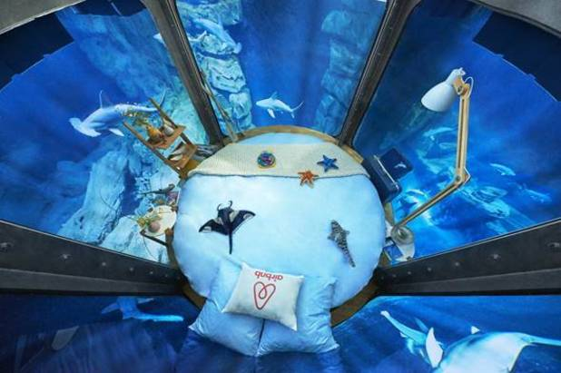 Paris Aquarium is offering three people the change to stay in this underwater bedroom