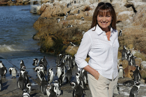 Penguin A&E With Lorraine Kelly, C5, Tue 10 May