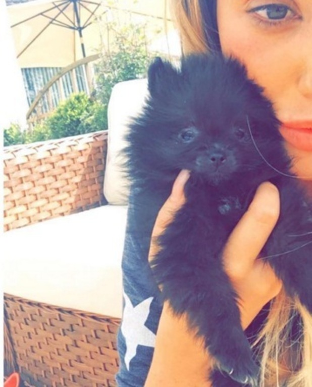 Charlotte Crosby welcomes new puppy, Rhubarb 7 May