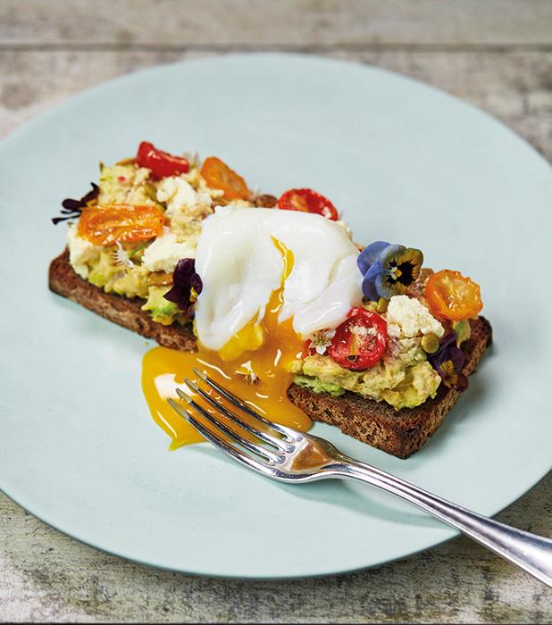 M: A 24 HOUR COOKBOOK: Recipe for avocado and toast