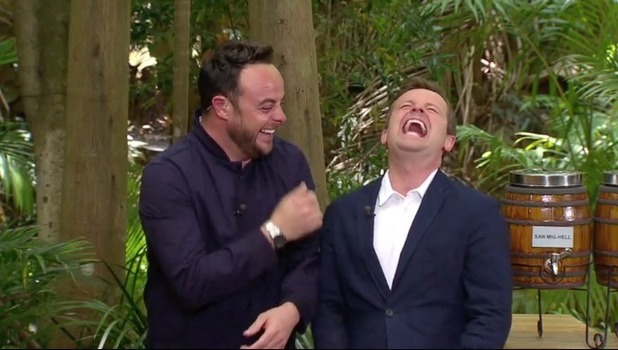 Ant and Dec, I'm A Celebrity Bush Brewery trial 24 November